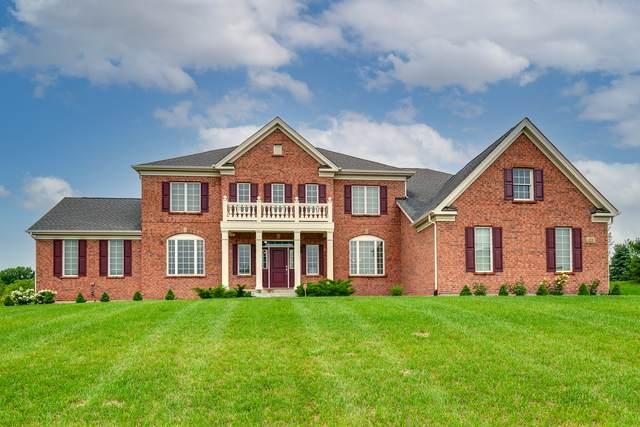 22 Shenandoah Circle, South Barrington, IL 60010 (MLS #11141452) :: O'Neil Property Group