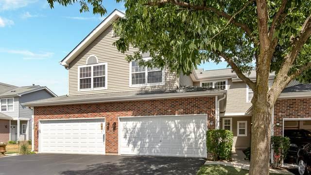 219 Grandview Court #219, Algonquin, IL 60102 (MLS #11141608) :: O'Neil Property Group