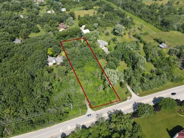 14204 Lemont Road, Homer Glen, IL 60491 (MLS #11142162) :: The Wexler Group at Keller Williams Preferred Realty