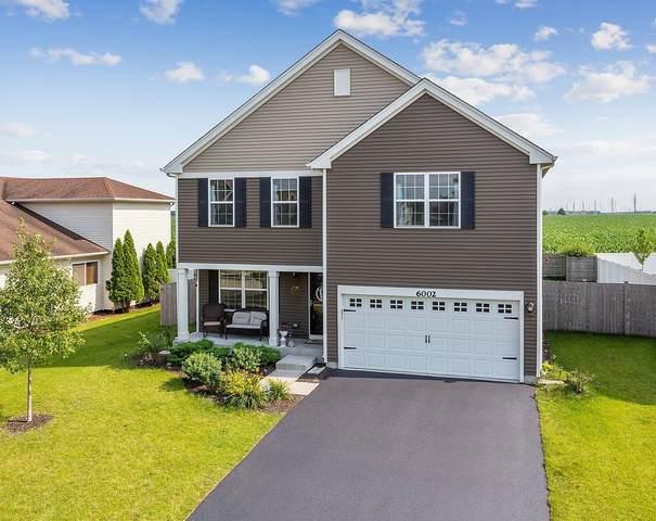 6002 Winterhaven Drive, Joliet, IL 60431 (MLS #11142620) :: O'Neil Property Group