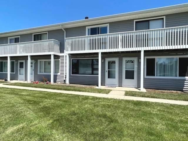 34287 N Birch Lane, Gurnee, IL 60031 (MLS #11142692) :: O'Neil Property Group