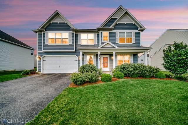 1250 Winding Way, Bolingbrook, IL 60490 (MLS #11142926) :: Suburban Life Realty