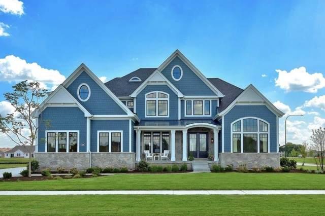 4292 Lacebark Lane, Naperville, IL 60564 (MLS #11143300) :: Suburban Life Realty