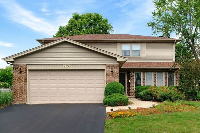 910 N Williams Drive, Palatine, IL 60074 (MLS #11143314) :: The Wexler Group at Keller Williams Preferred Realty