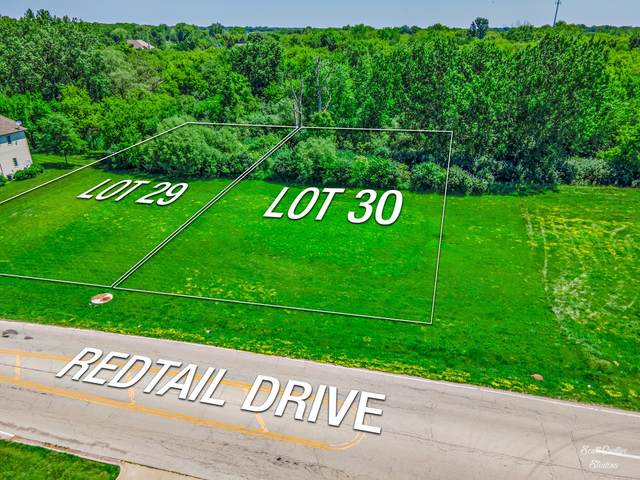 Lot 30 Redtail Drive, Lakewood, IL 60014 (MLS #11143427) :: O'Neil Property Group