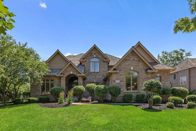 641 Waters Edge Drive, South Elgin, IL 60177 (MLS #11143520) :: O'Neil Property Group