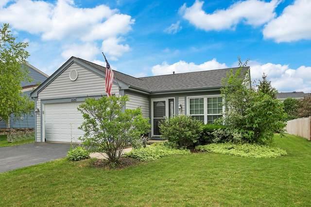 1034 Martingale Lane, Round Lake Beach, IL 60073 (MLS #11143714) :: O'Neil Property Group