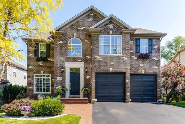 25170 W Warren Avenue, Lake Villa, IL 60046 (MLS #11143751) :: Suburban Life Realty