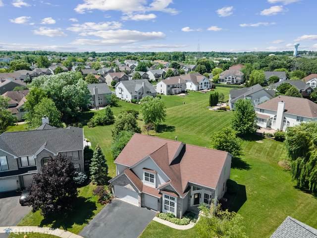 37204 N Alexandra Court, Lake Villa, IL 60046 (MLS #11144154) :: O'Neil Property Group