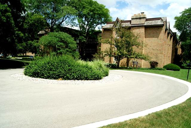 320 Claymoor 3A, Hinsdale, IL 60521 (MLS #11144217) :: The Wexler Group at Keller Williams Preferred Realty