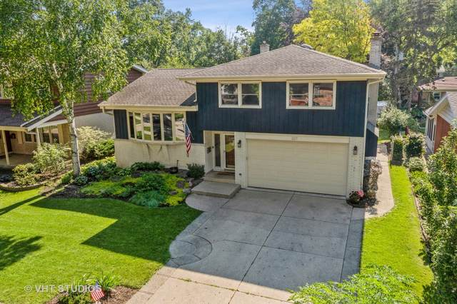 307 N Hickory Avenue, Arlington Heights, IL 60004 (MLS #11144545) :: Suburban Life Realty