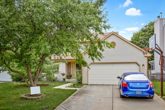 6426 Briarcliff Court, Lisle, IL 60532 (MLS #11144694) :: O'Neil Property Group