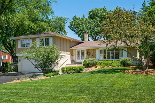5605 Lawn Drive, Western Springs, IL 60558 (MLS #11144739) :: O'Neil Property Group