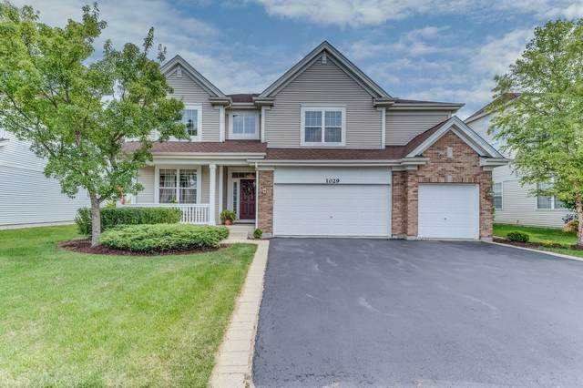 1029 S Butterfield Lane, Round Lake, IL 60073 (MLS #11145103) :: O'Neil Property Group