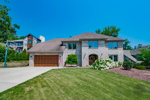 4227 White Birch Drive, Lisle, IL 60532 (MLS #11145294) :: The Wexler Group at Keller Williams Preferred Realty