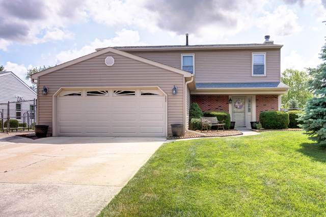 20047 S Rosewood Drive, Frankfort, IL 60423 (MLS #11145561) :: Suburban Life Realty
