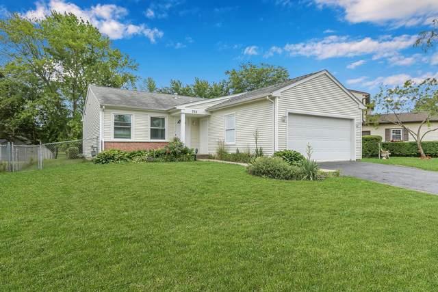 725 N Lakeside Drive, Vernon Hills, IL 60061 (MLS #11145773) :: Suburban Life Realty