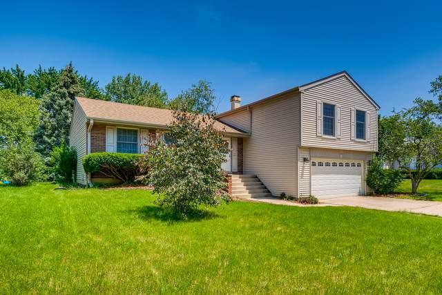 109 N Walnut Lane, Schaumburg, IL 60194 (MLS #11145784) :: Suburban Life Realty
