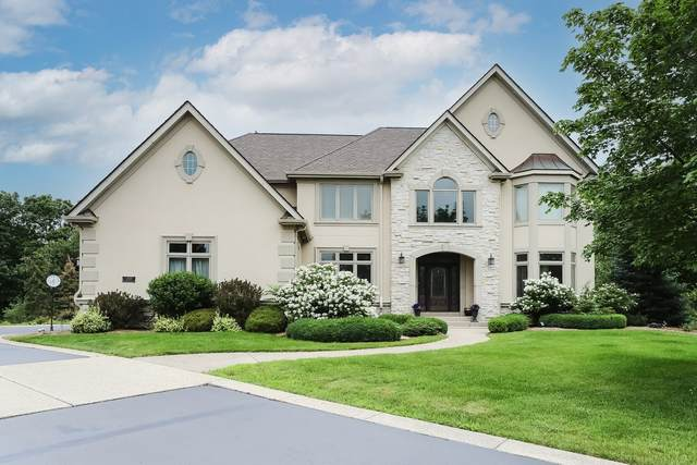 21514 W Hummingbird Court, Kildeer, IL 60047 (MLS #11146364) :: Suburban Life Realty