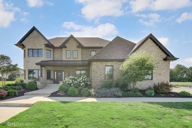 36118 Haley Lynn Drive, Custer Park, IL 60481 (MLS #11146868) :: Jacqui Miller Homes