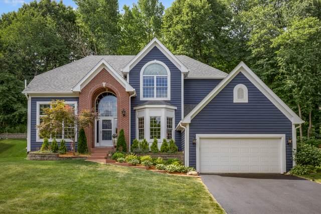 448 Delaware Circle, Bolingbrook, IL 60440 (MLS #11147464) :: Jacqui Miller Homes