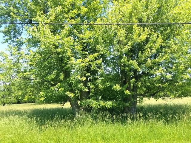 Lot 79 Lake Wildwood Drive, Varna, IL 61375 (MLS #11148229) :: Lewke Partners - Keller Williams Success Realty