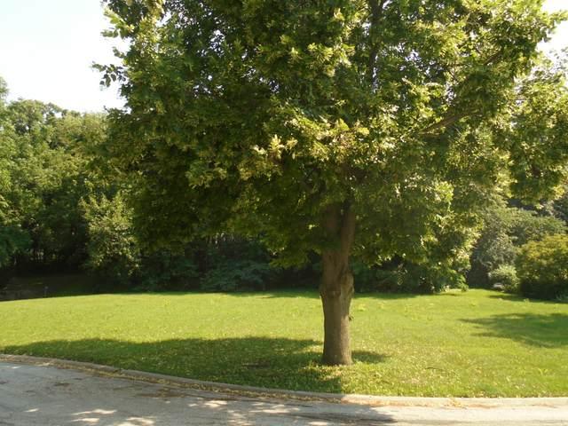 27W727 Brookside Drive, Winfield, IL 60190 (MLS #11148451) :: Suburban Life Realty