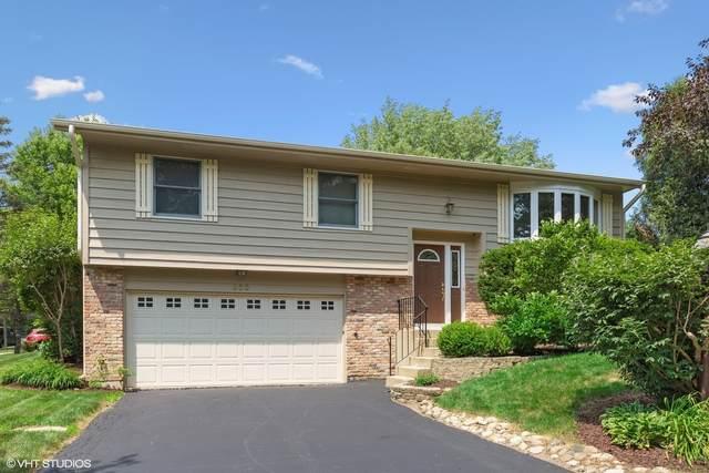 600 Chelsea Drive, Algonquin, IL 60102 (MLS #11148658) :: Jacqui Miller Homes