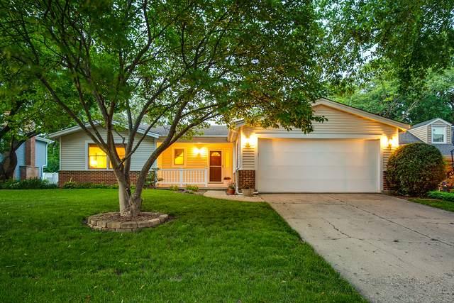 1150 Magnolia Lane, Libertyville, IL 60048 (MLS #11148698) :: Suburban Life Realty