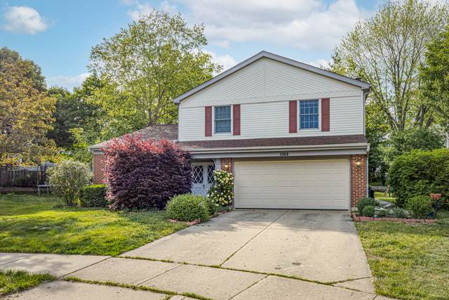 1162 Dayton Court, Buffalo Grove, IL 60089 (MLS #11149086) :: O'Neil Property Group