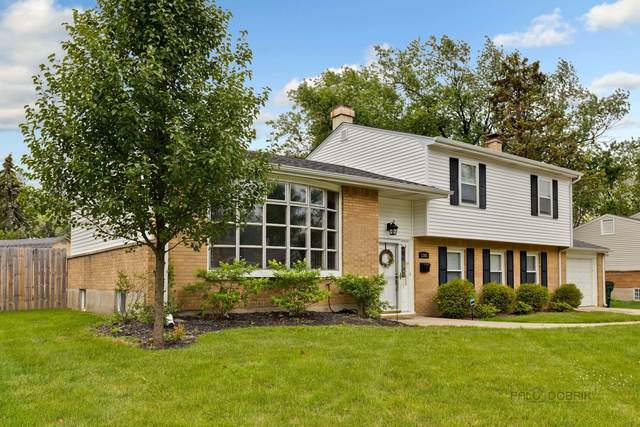 1365 E Norman Drive, Palatine, IL 60074 (MLS #11149137) :: O'Neil Property Group