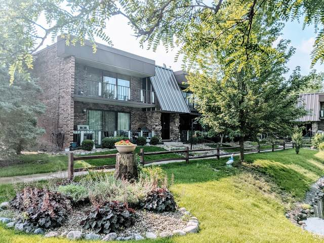 11103 O'gorman Drive 2-3A, Palos Hills, IL 60465 (MLS #11149909) :: The Wexler Group at Keller Williams Preferred Realty