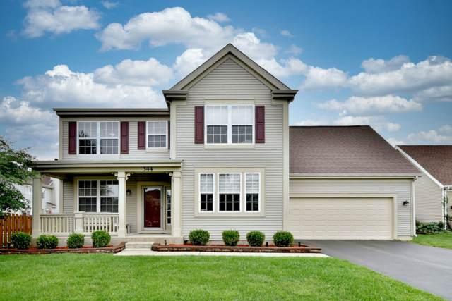 344 W Newbridge Lane, Round Lake, IL 60073 (MLS #11149976) :: O'Neil Property Group