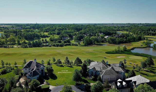 28920 N Niblick Knoll Court, Ivanhoe, IL 60060 (MLS #11150118) :: O'Neil Property Group