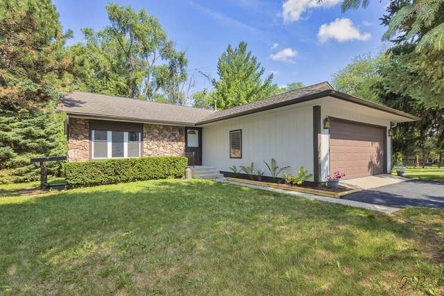 7420 Cass Street, Spring Grove, IL 60081 (MLS #11150559) :: O'Neil Property Group