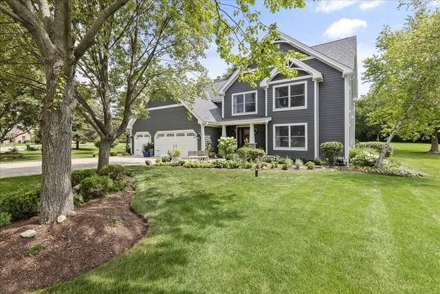 8 Shenandoah Lane, Hawthorn Woods, IL 60047 (MLS #11150742) :: Suburban Life Realty