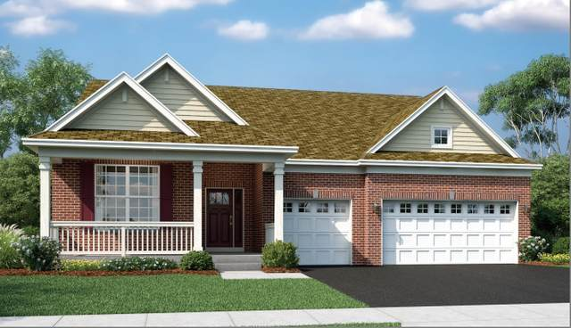 3630 Edelweiss Road, Elgin, IL 60124 (MLS #11151279) :: John Lyons Real Estate