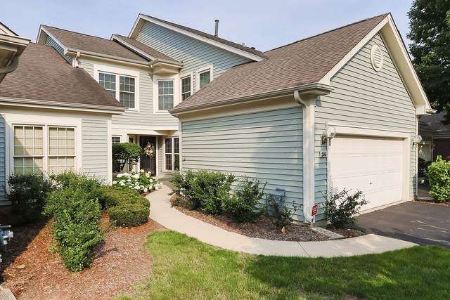 293 Ripplebrook Court, Schaumburg, IL 60173 (MLS #11151416) :: O'Neil Property Group