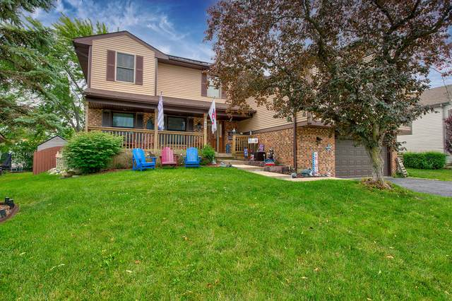 625 Ivy Court, Lake Zurich, IL 60047 (MLS #11151499) :: Suburban Life Realty