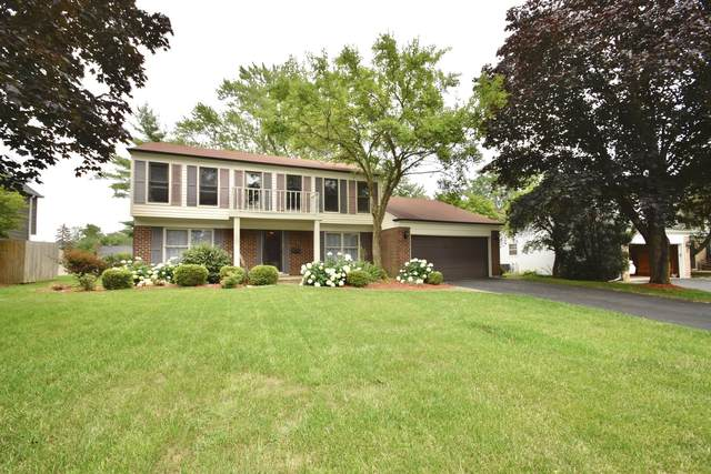 349 Countryside Drive, Roselle, IL 60172 (MLS #11151509) :: BN Homes Group