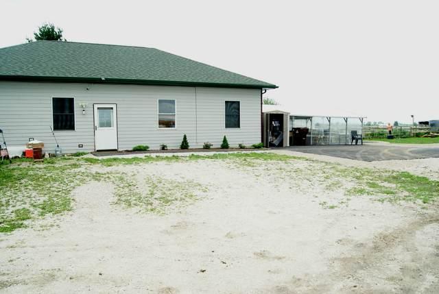 10772 N 3500W Road, Manteno, IL 60950 (MLS #11151836) :: O'Neil Property Group