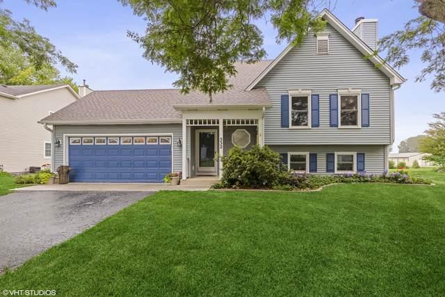 532 Cambridge Avenue, Elburn, IL 60119 (MLS #11152328) :: Suburban Life Realty