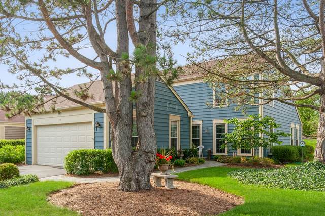 10 The Court Of Stonecreek, Northbrook, IL 60062 (MLS #11152902) :: Suburban Life Realty