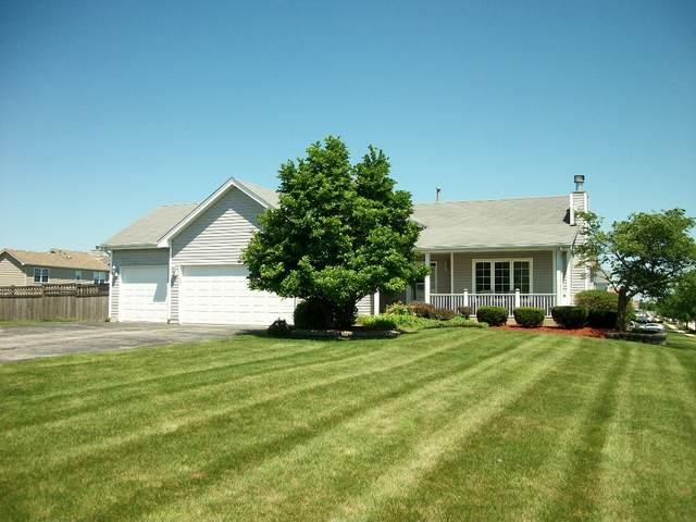 25741 S Iris Court, Monee, IL 60449 (MLS #11152940) :: Suburban Life Realty