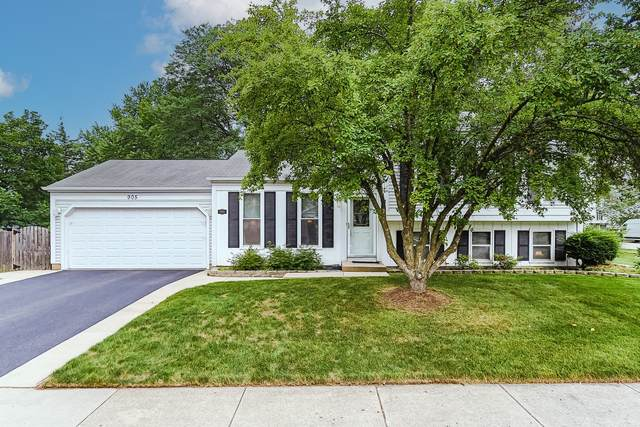 905 Fox Run Lane, Algonquin, IL 60102 (MLS #11153227) :: O'Neil Property Group