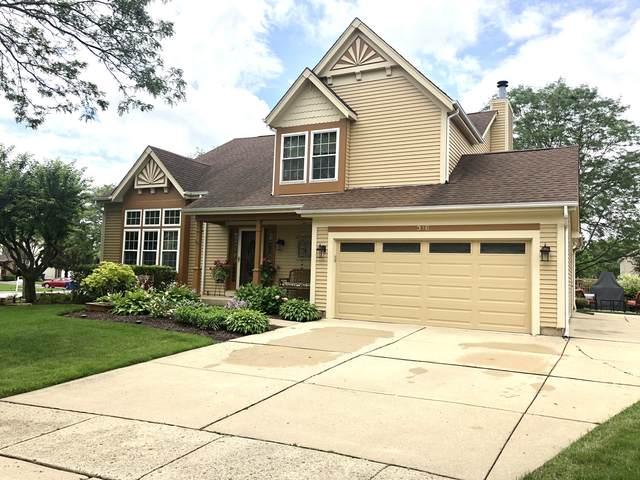 316 Wildberry Lane, Bartlett, IL 60103 (MLS #11153637) :: O'Neil Property Group
