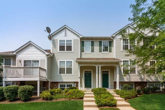 103 Terra Firma Lane, Volo, IL 60020 (MLS #11153981) :: O'Neil Property Group