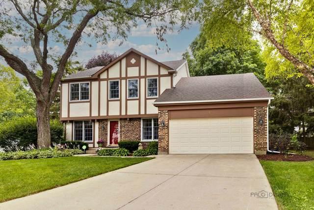 3 Altoona Court, Vernon Hills, IL 60061 (MLS #11154509) :: O'Neil Property Group