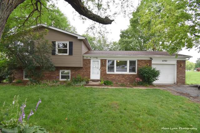 1750 Patricia Lane, St. Charles, IL 60174 (MLS #11154758) :: O'Neil Property Group