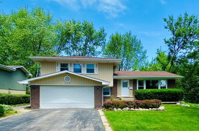802 E Valley Lane, Arlington Heights, IL 60004 (MLS #11154821) :: Suburban Life Realty